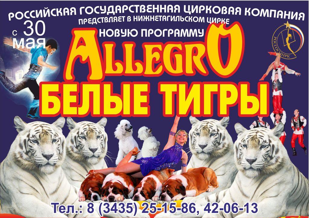 С 30 мая новая программа АЛЛЕГРО
