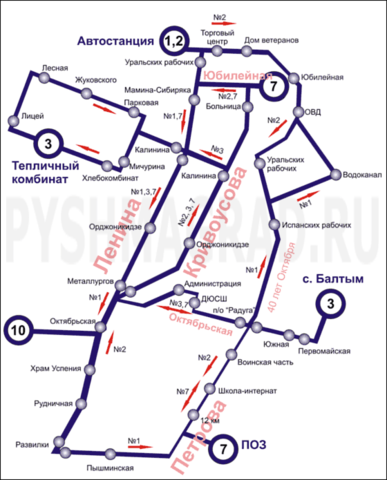 Схема автобусных маршрутов.