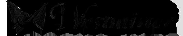 Отзывы. Комментарии. Интернет-магазин Westmister.eu (Вестмистер). Европейская Мужская Одежда